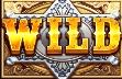 Wild ของ WILD WEST GOLD